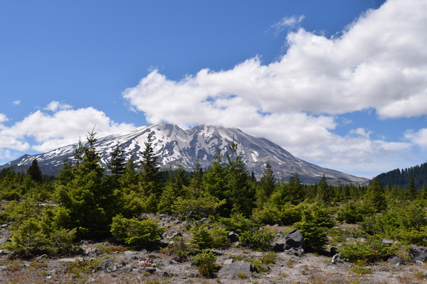 South Side of Mount Saint Helens