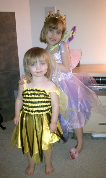 Fairy and the Bee